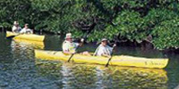 Kayakers on the water near Port Sanibel Marina, Fort Myers, Florida