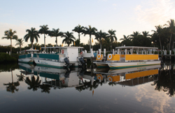 Adventures in Paradise Boat Cruise Tours in Fort Meyers, Florida