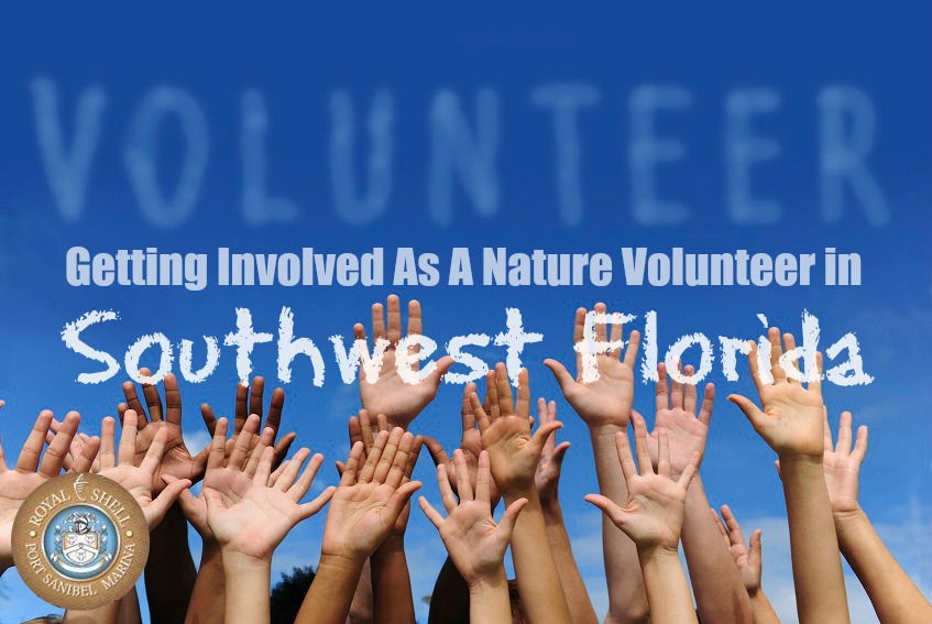 nature-volunteer