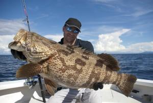 Port sanibel marina grouper slam fishing tournament header