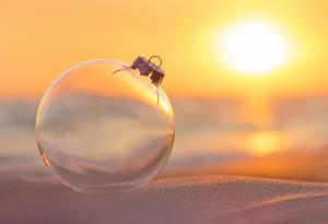 seashell Christmas decorations
