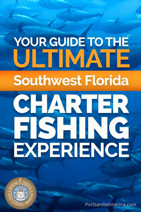 charter boat fishing